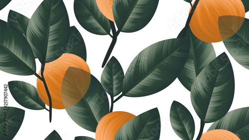 Seamless pattern, orange fruit with green leaves on branch on white background