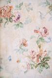 Tło z różami - kwiatowy ilustracja - stary tekstura papieru - 217915820