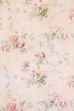Tło z różami - kwiatowy ilustracja - stary tekstura papieru - 217915865
