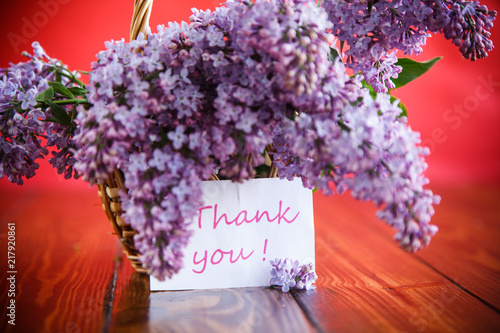Foto op Plexiglas Bloemen branch of blossoming spring lilac on a red background