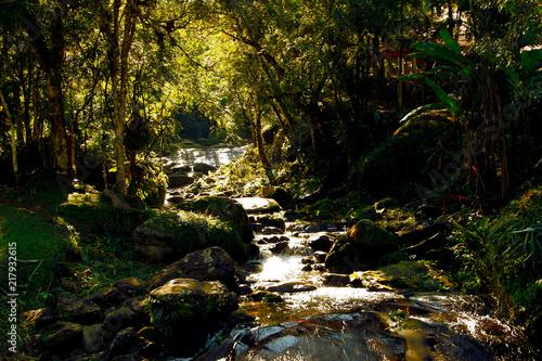Foto op Aluminium Oranje Stones River