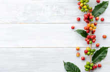 Red Berry Coffee Beans On White Wooden Background With Copy Space