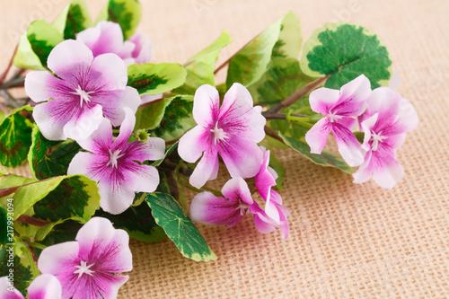Fotobehang Bloemen Flowers