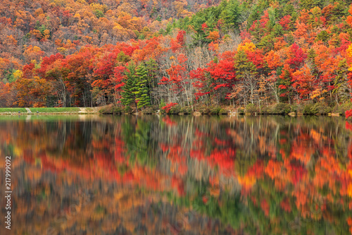 Foto op Plexiglas Herfst Vibrant autumn scene & water reflections along Sherando Lake within the George Washington National Forest near Lyndhurst, Virginia (USA).