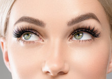 Eyes Lashes Closeup Woman Face...