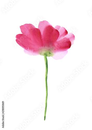 akwarela-rozowy-kwiat
