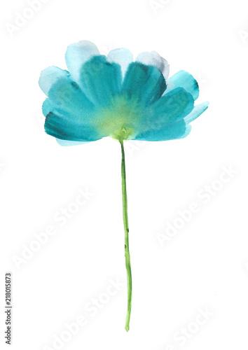 akwarela-niebieski-kwiat