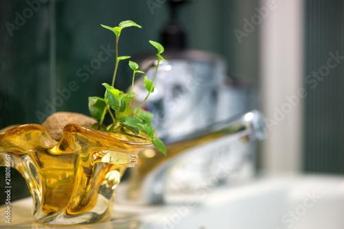 Fotografía  Modern tiled bathroom basin faucet with fresh plants designed for eco style homes