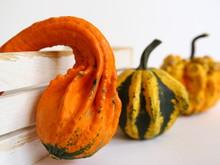 Pomarańczowa, żółta I Zielona Dynia Ozdobna Na Halloween Z Białą Skrzynią Na Jasnym Tle - Jesienna Dekoracja Do Nowoczesnego Wnętrza
