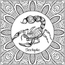 Scorpio. Decorative Zodiac Sign On Pattern Background. Outline Hand Drawing. Good For Coloring Page For The Adult Coloring Book Stock Vector Illustration.