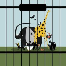 Helpless Animals Kept In Capti...