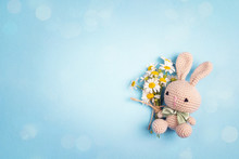 Cute Toy Bunny With Chamomile ...