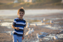 Children, Beautiful Boy Brothers, Watching And Feeding Seagulls On The Beach