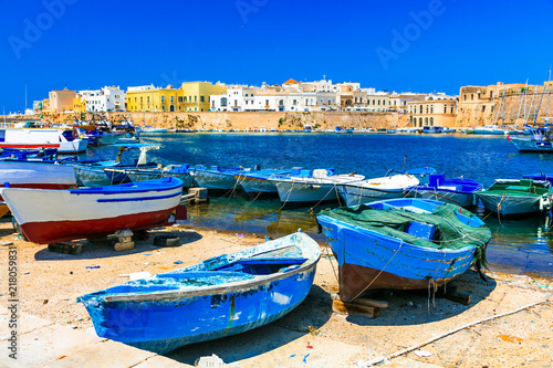 Traditional Italy. Old port of Gallipoli, view with castle amd boats, Puglia.