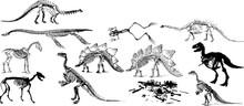恐竜の化石のシルエッ...