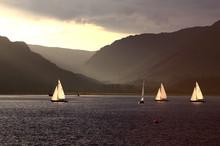 Yachts In Holy Loch, Scotland