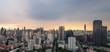 panorama of cityscape on evening skyline