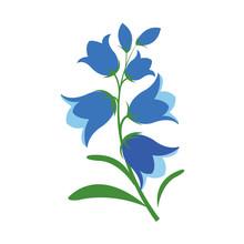 Nature Flower Bluebell Flower