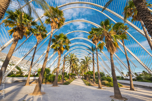 Fototapeta Umbracle modern palm tree park in Valencia, Spain. obraz
