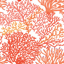 Sea World Seamless Pattern, Background With Fish, Corals And Shells On White Background. Stock Vector Illustration.