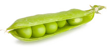 Green Peas In The Pod Isolated...