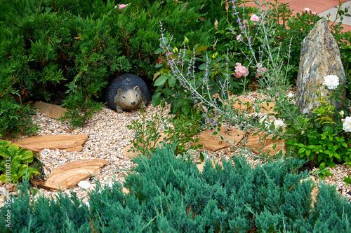 Printed kitchen splashbacks Squirrel Landscape design. Flowers garden. Flowers in the garden after rain. Flowers macro. The care of garden plants