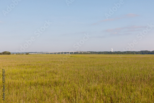 Field of green dune grass along with North Carolina coastline, with a bridge in the background