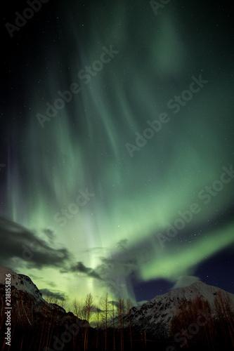 Photo  Aurora in Alaska
