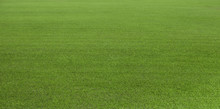 Green Grass Field, Green Lawn. Green Grass For Golf Course, Soccer, Football, Sport. Green Turf Grass Texture And Background For Design With Copy Space For Text Or Image.