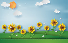 Paper Art Style Of Sunflower With Landscape Summer Season Blue Sky Background.vector