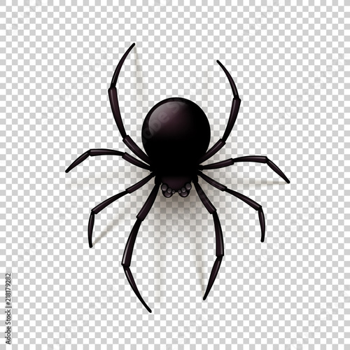 Black Spider with transparent shadow on a checkered background Canvas Print