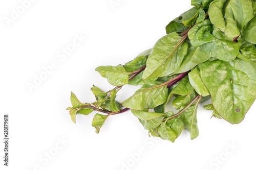 Organic fresh raw bunch of red Malabar Spinach