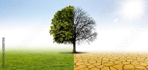 Fotografie, Obraz  Klimawandel