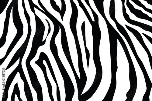 Zebra Stripes Pattern. Zebra print, animal skin, tiger stripes, abstract pattern, line background, fabric. Amazing hand drawn vector illustration. Poster, banner. Black and white artwork, monochrom - 218187231