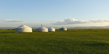 Camp Of Yurt , In The Grassland Of Mongolia