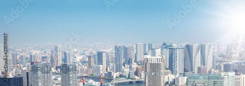 Aluminium Prints panoramic view to the Tokyo, Japan from air. Cityscape with many modern business buildings
