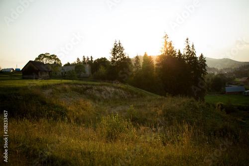 Foto auf Gartenposter Wald Landscape