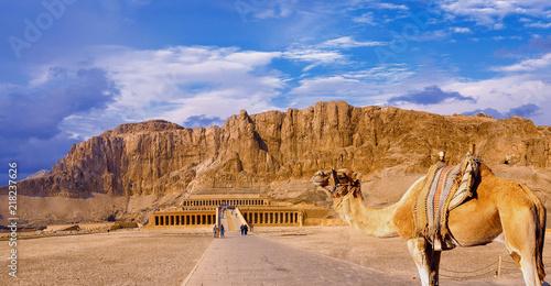 Foto op Plexiglas Bedehuis Temple of Queen Hatshepsut, View of the temple in the rock in Egypt