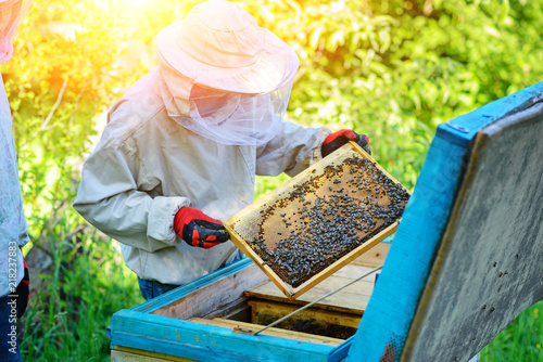 Apiary. The beekeeper works with bees near the hives. Apiculture Canvas Print