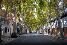 Street In Downtown Mendoza - M...