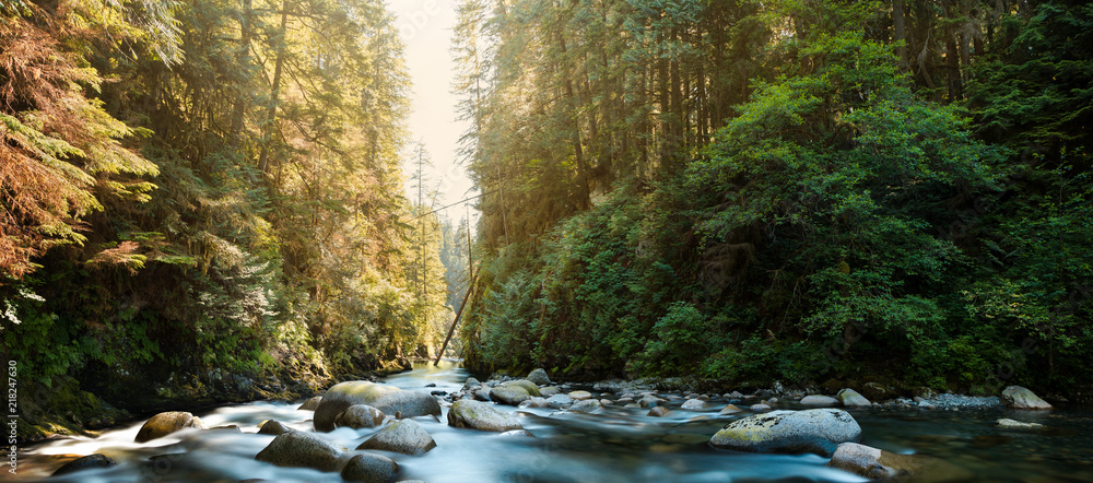 Fototapety, obrazy: The river at Lynn Canyon in North Vancouver.