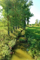 Fototapeta na wymiar Wald - Waldweg - Felder - Wiese