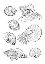 Sea Collection. Original Vector Illustration. Outline Hand Drawing.  Isolated On White Background.