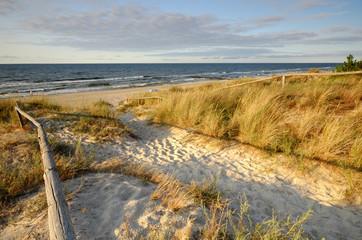 Wydmy nad morzem bałtyckim
