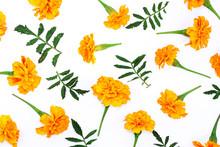 Beautiful Orange Marigold Flow...