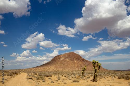 Tuinposter Nachtblauw Mojave, Mojave Desert, Mojave Desert California