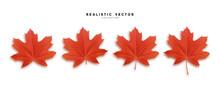 Set Of Autumn Maple Leaves, Isolated On White Background. Fall Foliage Realistic Design.