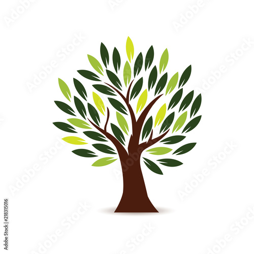 Fototapeta Tree Icon in white background obraz na płótnie