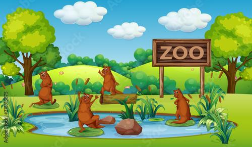 Obrazy dla dzieci pierwsze-zoo-dziecka