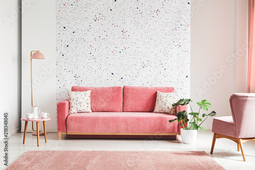 Fototapeta Real photo of a pink, velvet sofa, plant, coffee table with pot and cups on a lastrico wall in a living room interior obraz